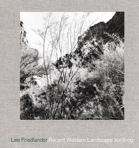 Friedlander-2