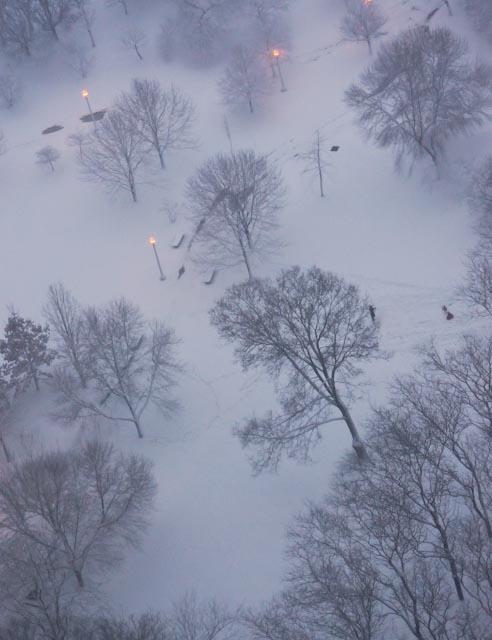 KTanaka-Winter Park