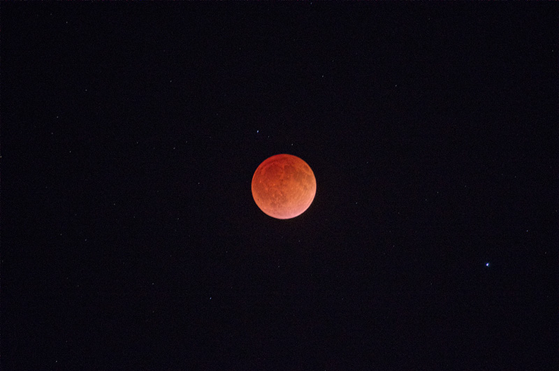 Gogginbloodmoon