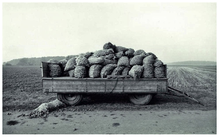Potato wagon