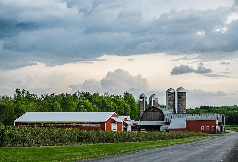 Dusk-farmscape2