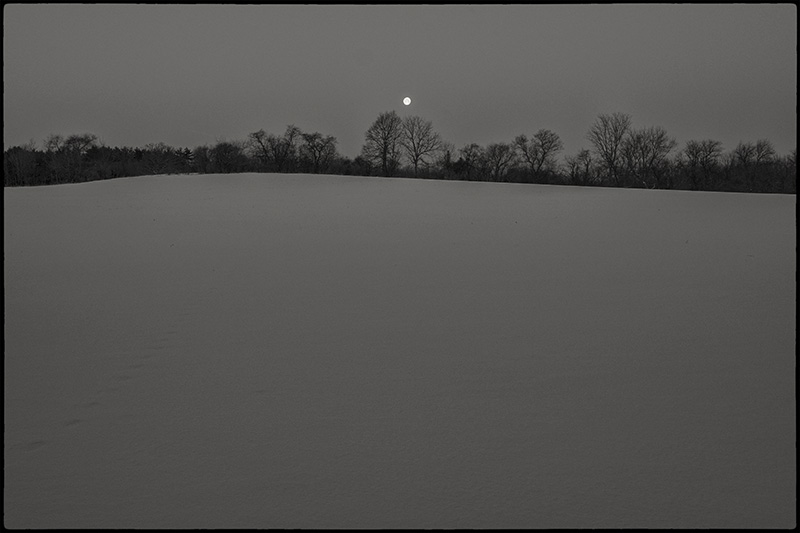 Moonfield-small-BW-border