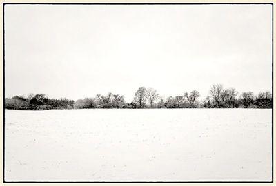 Snowelarte