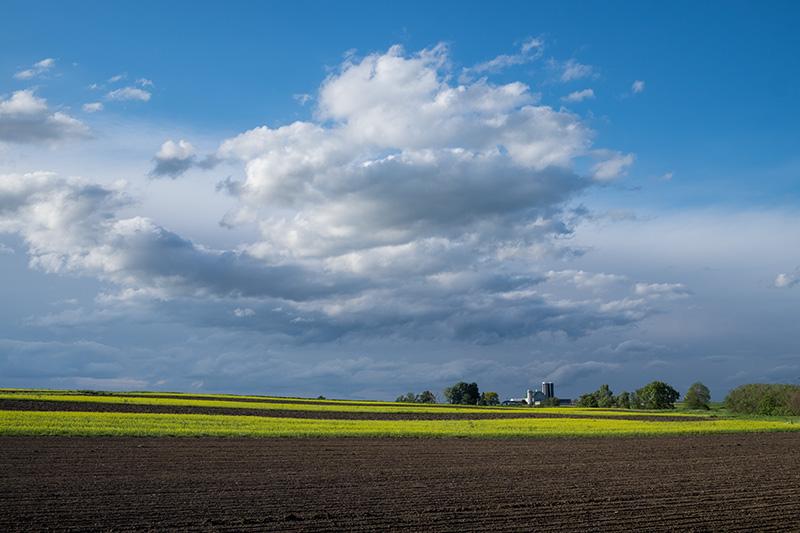 Plowed field-small