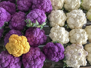 Amish cauliflowers