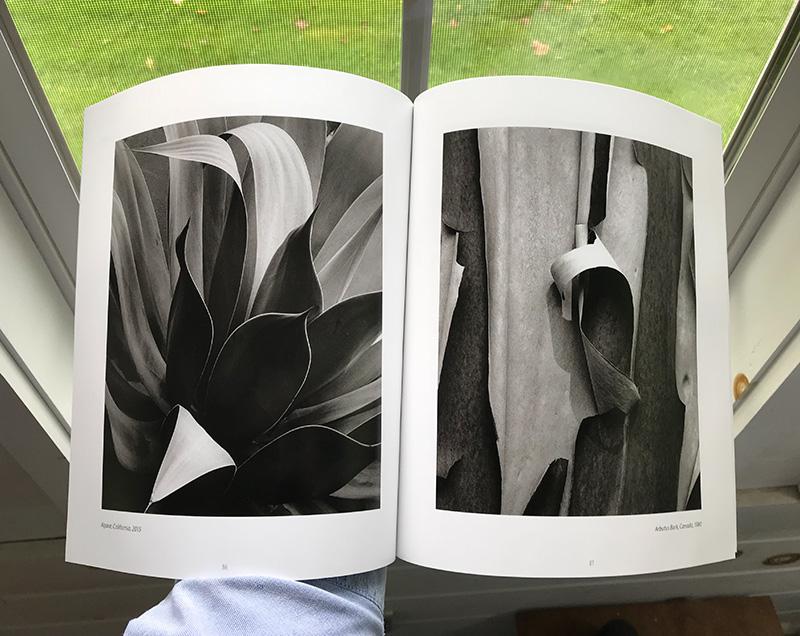 Merg book-small