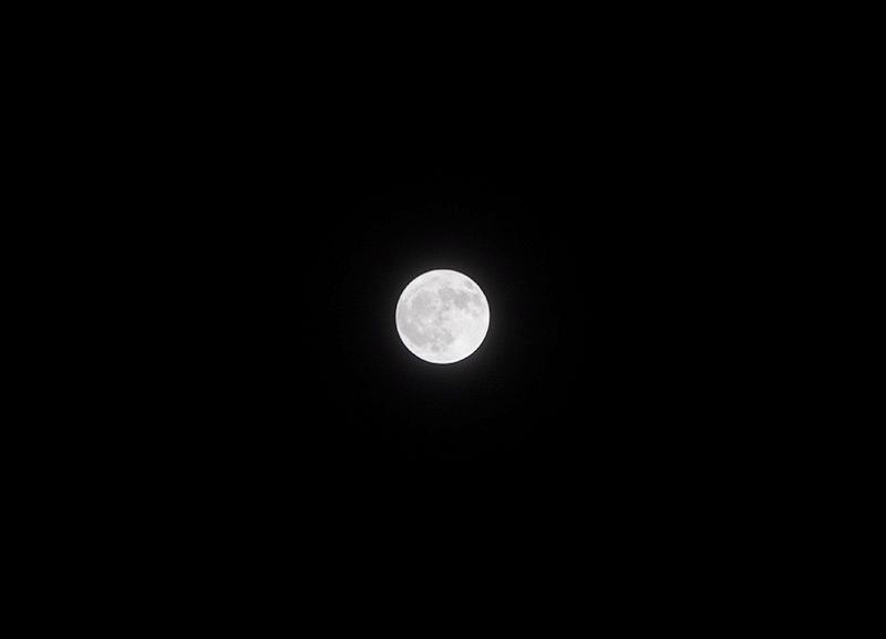 Dazzling moon