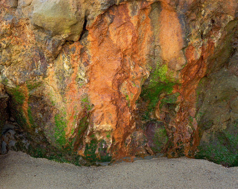 BLog350 Pitted Rocks with Algae