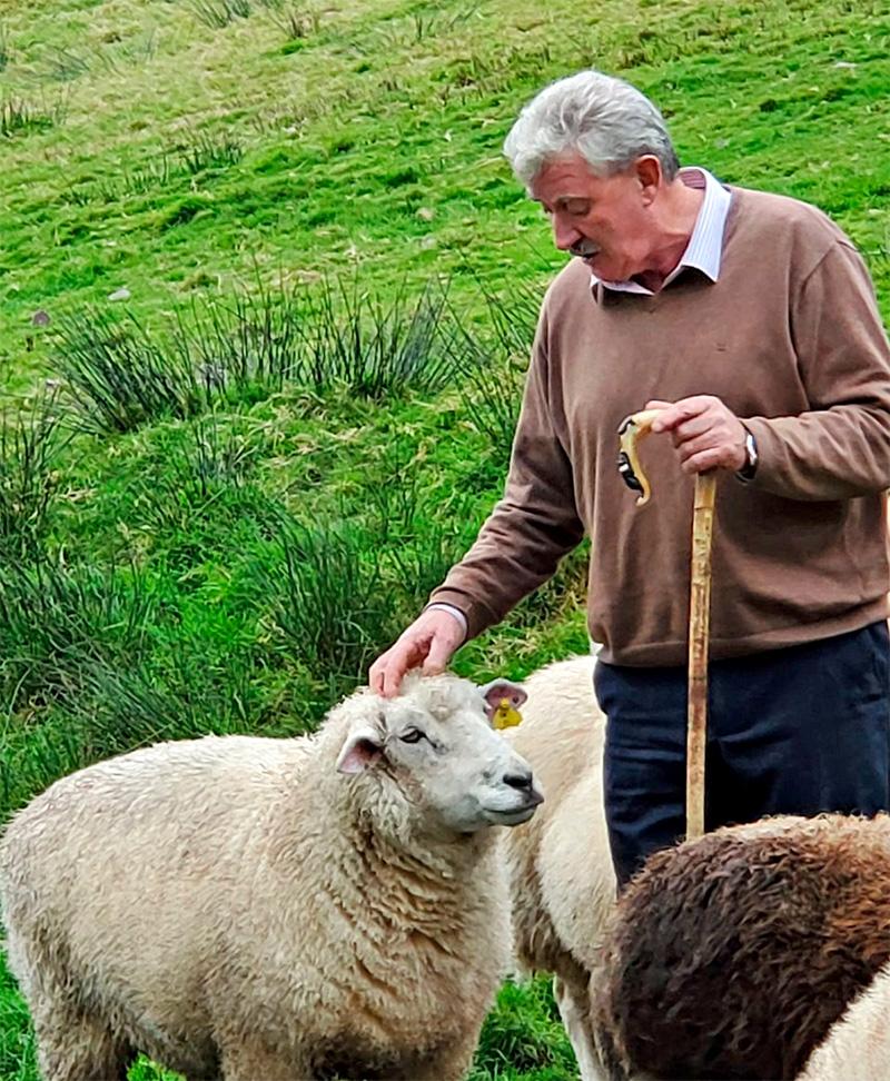 Kells Sheep Centre