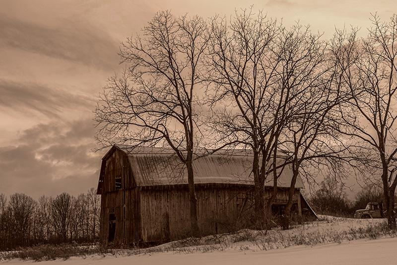 Sepia barn-small