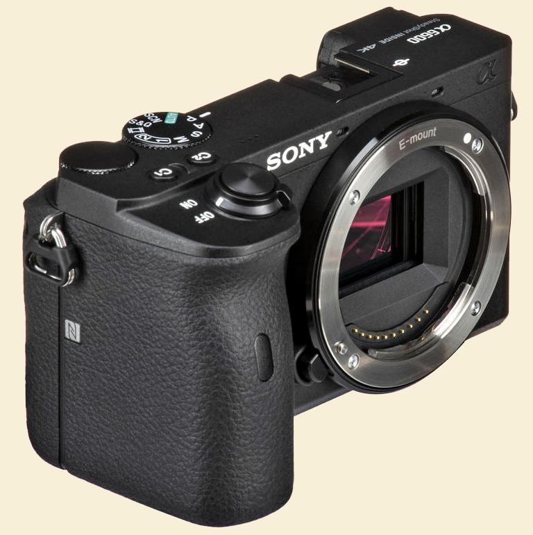 Sony a6600-3