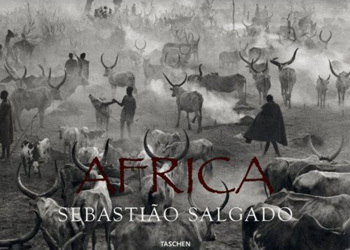 Salgadoafrica